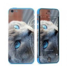 Custom Skin iPhone 5C