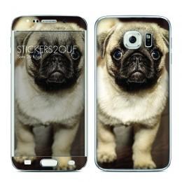 Skin Samsung Galaxy S6 Edge
