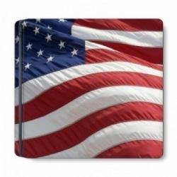 USA PS4 Slim