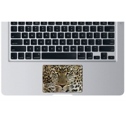 Leopard Touchpad